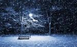 Snow-Park-Bench